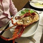 What a lovely freshly prepared lobster