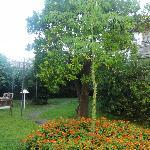 Le jardin vraiment sublime après (et avant) la fournaise des visites