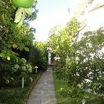 Promenade odorante