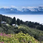 View from the hill just north of Homer, Alaska