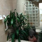 There were plants in our shower... Along with a giant mirror.
