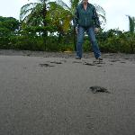 Visita a la playa de Tortuguero