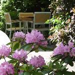Photo de Hotel Restaurant Kolb