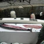 Capt. Omar filets fish