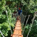 one of the bridges to a zip platform