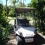 The AWESOME golf buggy for our use whilst staying in the Bure!