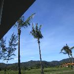 Nice clear sky
