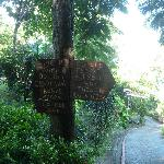 Signpost to cottages