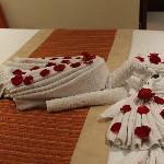 Towel dec 9