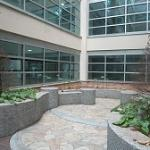 4階の中庭