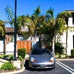 Parking Lot Paradise