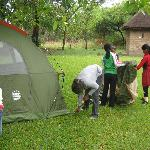 A group of year 5 children camping in campsite