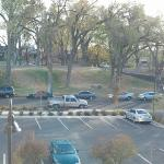 View of park from Room 313
