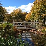 Tignish Heritage Inn garden pond, Tignish PEI Canada