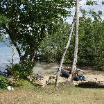 View from the hotel grounds on the beach/mangrove