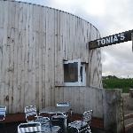 Tonia's