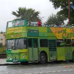 il bus verde che ci ha scarrozzati in lungo ed in largo