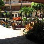 Koi pond inside open air main lobby