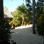 Garden View Cabanas