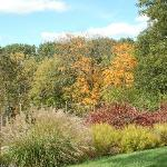 Fall colors at Mt Airy
