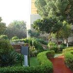 Schöner Garten, sehr gepflegt beim Poolbereich