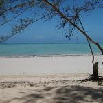 A picture taken from my lounger at Ndame Beach Resort