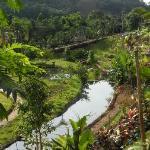 ลำธารน้ำแร่ จากต้นน้ำที่ก่อกำเนิดในพื้นที่รีสอร์ท