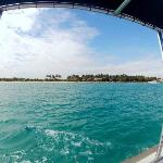 Peanut Island Ferry