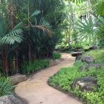 Botanical Garden!