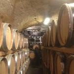 crotto con botti di vino