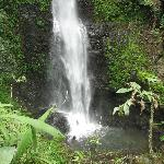 falls near the homestay