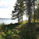 Walking trail across road to lake