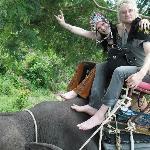 Elephant ride 5mins away
