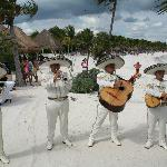 Mariachi band @ our wedding