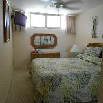 Bedroom window unit 220