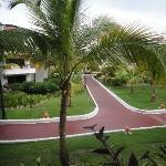 Resort Boardwalks