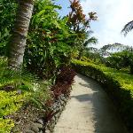 Wonderful paths throughout the resort