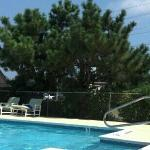 poolside at Cape Pines Motel