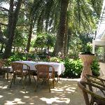 Столики ресторана на улице, под пальмами