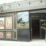 Taberna Irlardensa Special Horse