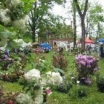 Gardener's Fair in May