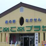 Nakasen Michi-no-Eki