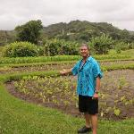 Pono by a friends field of Taro, the Hawaiian staff of life.