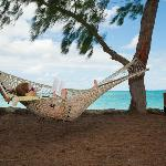 Hammocks in the shade on the beach