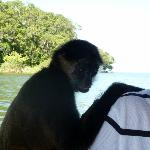 An up close and personal visit on Lake Nicaragua