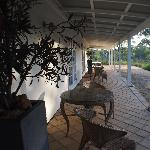 The veranda, where I spent several hours reading in peace and admiring the wildlife