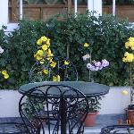 The garden below on the terrace