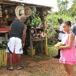 Roadside stop for cocnut water