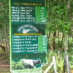 The rates for the various safaris and watchtowers