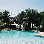 Vue panoramique sur la piscine et le jardin de pins et de palmiers